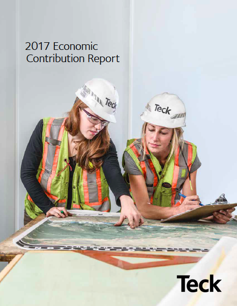 2017 Economic Contribution Report