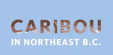 Caribou Penning Program