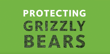 Protecting Grizzly Bears