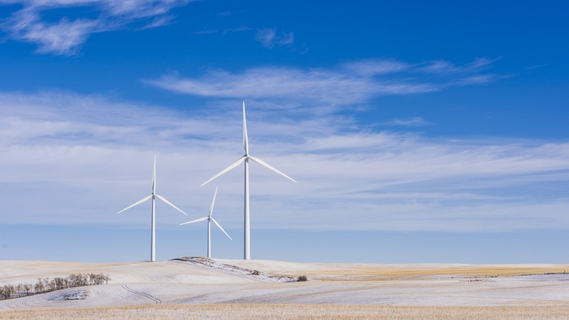 Investing in Wind Energy