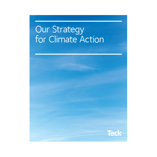 Our Strategy for Climate Action