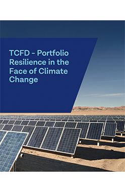 Portfolio Resilience in the Face of Climate Change