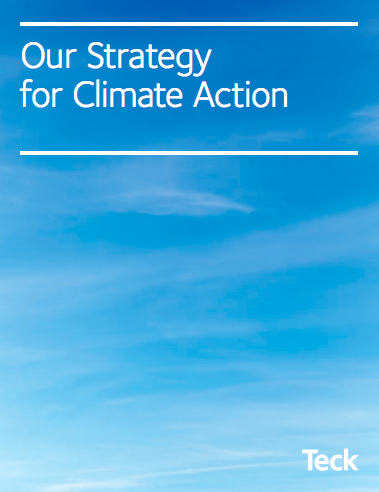 Strategy for Climate Action